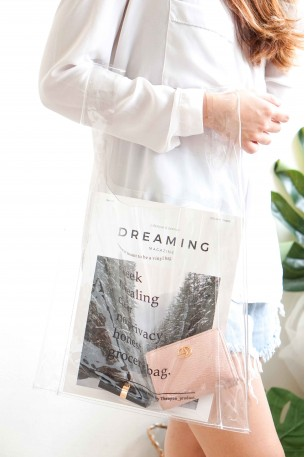(BACKORDER) The Ordinary Transparent Bag