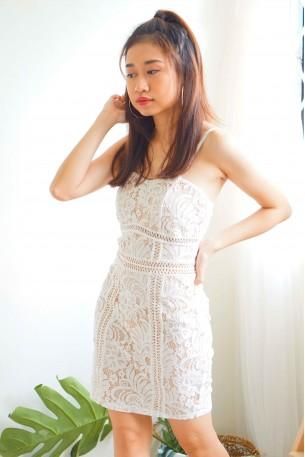 (BACKORDER) Faithful Wishing White Lace Bodycon Dress