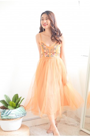 Dreamy Tale Embroided Mesh Dress in Yellow