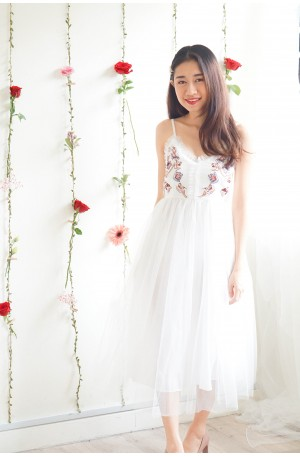 (BACKORDER) Dreamy Tale Embroided Mesh Dress in White
