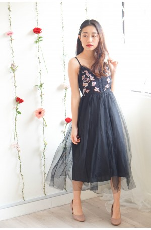 Dreamy Tale Embroided Mesh Dress in Black