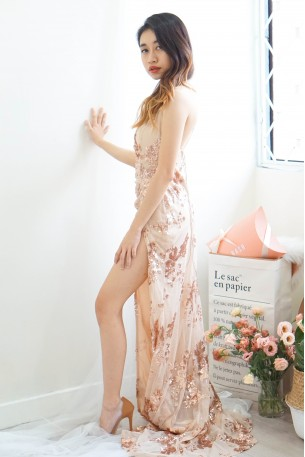 Evening Lights Sequin Maxi Dinner Dress in Nude Gold